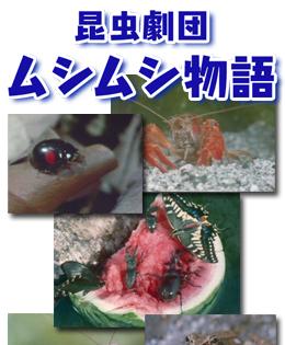 昆虫劇団ムシムシ物語