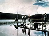 山あいの湖に集まった4人。彼らは殺人事件の加害者遺族だった…僕たちは 被害者なのか、加害者なのか——