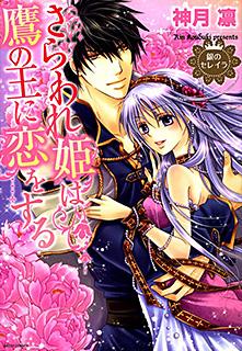 銀のセレイラ2 さらわれ姫は鷹の王に恋をする 第1巻