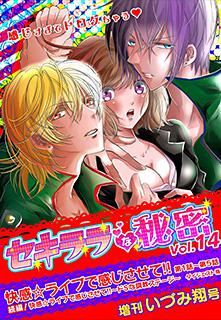 セキララな秘密 Vol.14 増刊 いづみ翔号