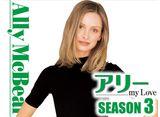 「アリー my Love シーズン3」第1話〜第21話 30days パック