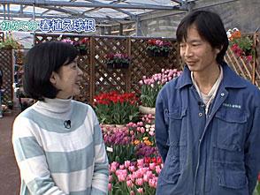 手づくり花づくり #1015『初めての春植え球根・京都府立植物園の取り組み』
