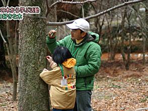 手づくり花づくり #1016『私の好きな木』