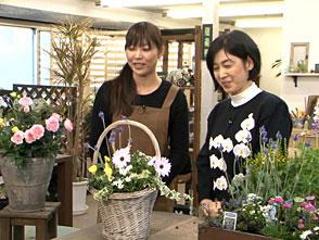 手づくり花づくり #1067「初心者向けに春の寄せ植え」