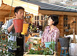手づくり花づくり #1077「ベランダで気軽に野菜生活」