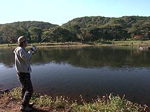 トラウトギャラリー AREA FISHING 大森 誠