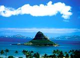 Hawaiian Express オアフ島 ゴージャス・ハワイ!