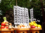ワンダーJAPAN TV #9 東京の富士塚