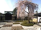 京都・町歩き