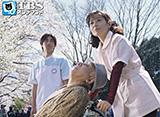 ソープ嬢モモ子シリーズ(1982年〜1997年)