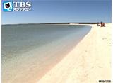 TBSオンデマンド「地球絶景紀行 太古の贈り物シャーク湾(オーストラリア)」