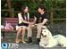 TBSオンデマンド「韓国ドラマ『僕の彼女は九尾狐<クミホ>』 #16」(字幕つき日本語吹替版)