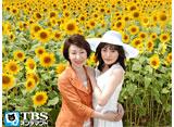 ひまわり〜夏目雅子、27年の生涯と母の愛〜
