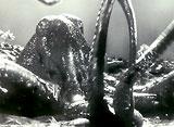 ウルトラQ 第23話 南海の怒り