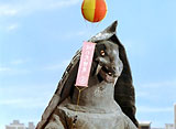 「帰ってきたウルトラマン」 第31話〜第35話 7daysパック