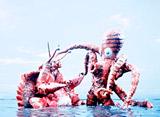 ウルトラマンタロウ 第7話 天国と地獄 島が動いた!