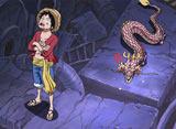 ワンピース 第611話 小さなドラゴン!モモの助現る!