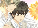 「SUPER LOVERS 2」 全10話 30daysパック