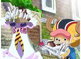 アニメジャン 「ワンピース」 ゾウ編2(第761話〜第771話) 14daysパック