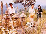 八つ墓村(1977年)