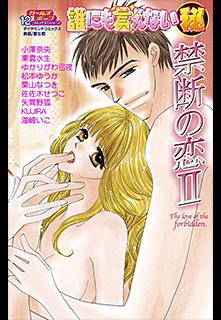 誰にも言えないマル秘 第12巻 禁断の恋II