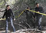BONES −骨は語る− シーズン2 第10話 眠れぬ森の魔女