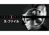 「X-ファイル シーズン1 第1話 〜 第12話」14days パック
