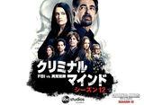 「クリミナル・マインド/FBI vs. 異常犯罪 シーズン12」全話パック