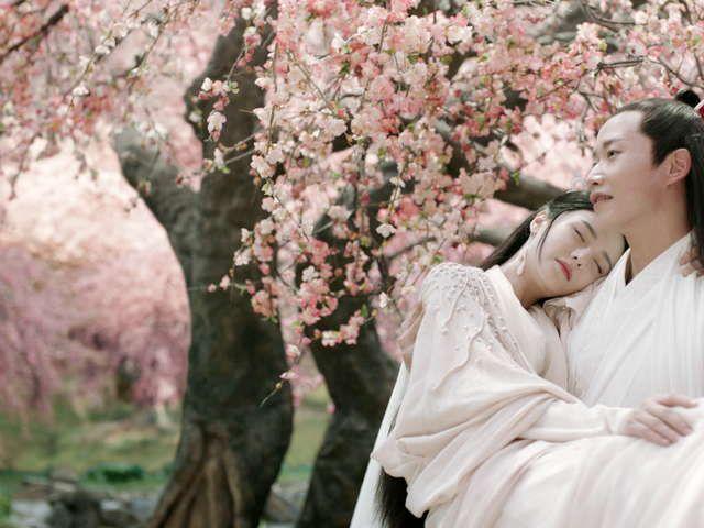 桃花 運命 の