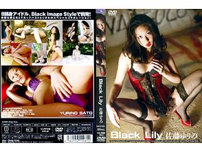 佐藤ゆりの「Black Lily」
