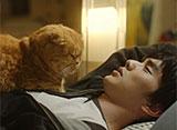 想像ネコ〜僕とポッキルと彼女の話〜 第4話