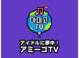 「アイドルに夢中!アミーゴTV シーズン1」全話 20daysパック