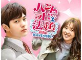 「ハンムラビ法廷〜初恋はツンデレ判事!?〜」第1話〜第8話 14daysパック