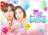 「恋のトリセツ〜フンナムとジョンウムの恋愛日誌〜」第1話〜第12話 14daysパック