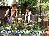 手づくり花づくり #978『暑い夏に育てたい草花』