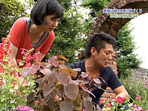 手づくり花づくり #988『豪華に魅せる花壇づくり』