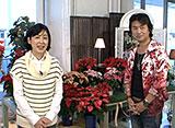 手づくり花づくり #1002『冬の鉢花管理』