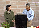 手づくり花づくり #1005『栽培のコツ! 〜ポインセチア&セントポーリア〜』