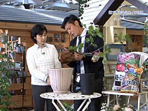 手づくり花づくり #1023『小さな収穫の喜び』