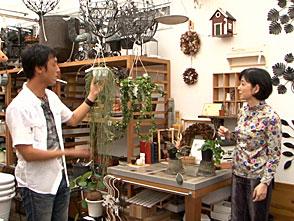 手づくり花づくり #1038「レアな植物をゲットしよう!」