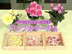手づくり花づくり #1045「香りを楽しむ新提案 アンフルラージュ」