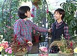 手づくり花づくり #1046「スーパー園芸女子登場 寄せ植えリース」