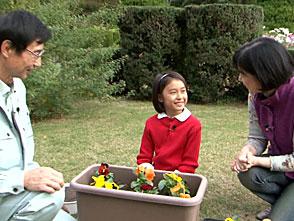 手づくり花づくり #1051「お子さんと育てよう! 冬のお花」