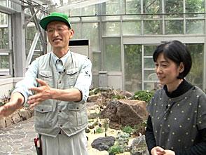 手づくり花づくり #1052「京都府立植物園 観覧温室リニューアル」