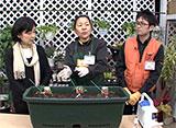手づくり花づくり #1069「プランターで始める野菜作り」