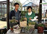 手づくり花づくり #1071「鉢やハンギングにおすすめの春の草花」