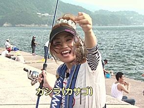 関西発!海釣り派 その77「暑い夏!お手軽楽しい海釣り公園でサビキ釣り!」