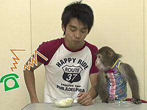 いきいき動物ビデオ 3巻