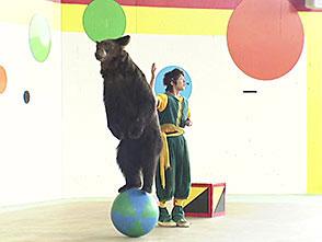 いきいき動物ビデオ 5巻