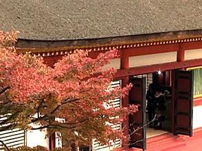 紅葉 名所絶景を訪ねて 奈良の紅葉